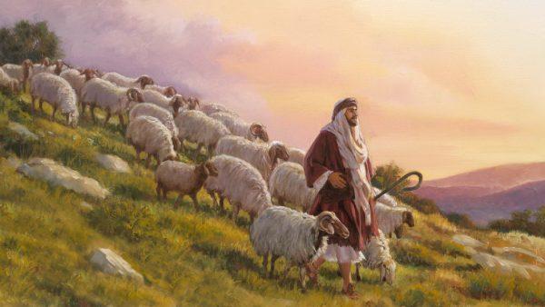 Acordaos De Vuestros Pastores